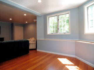 Professional Painter Hartford